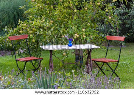 Garden table and chairs under a apple tree laden with fruit in a lush green backyard