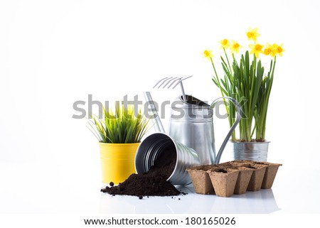 Garden tools and accessories with daffodils and grass, overturn pot with soil over white background - stock photo