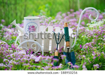 Garden tools and watering can in the spring flowers lawn  - stock photo