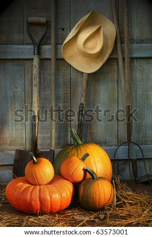 Garden tools in wood shed with pumpkins - stock photo