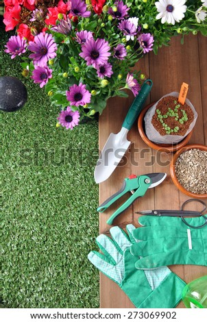 garden tools on grass and wood table with various types of plants
