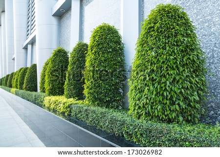 garden trees beside the building - stock photo