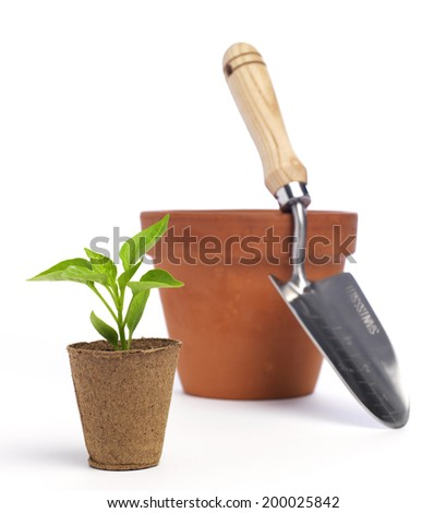Garden Trowel with terracotta pots and a seedling