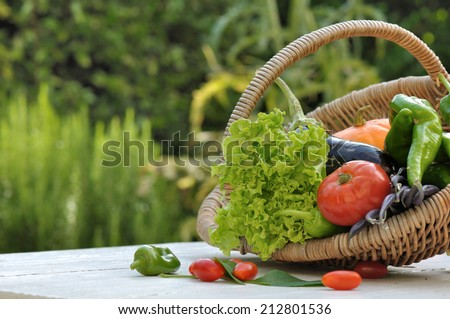 garden vegetables in a basket on a table - stock photo