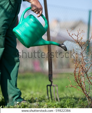Garden watering - stock photo