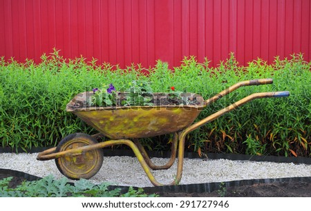 garden wheelbarrow flowers - stock photo