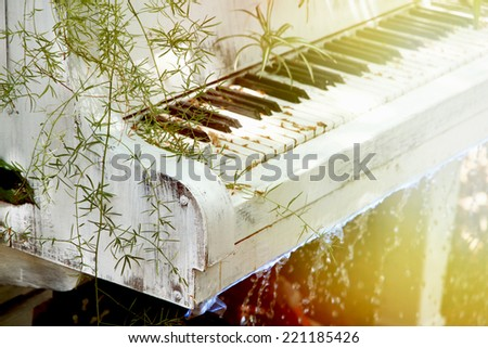 Garden with pond and piano in retro style - stock photo