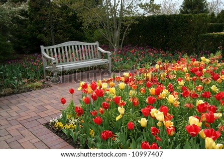 Garden with tulips and bench - stock photo