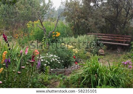 Garden yard in fog. - stock photo
