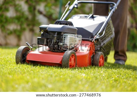 Gardener mowing the lawn at backyard - stock photo