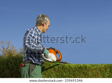 gardener pruning thuja hedge with electric hedge clippers - stock photo