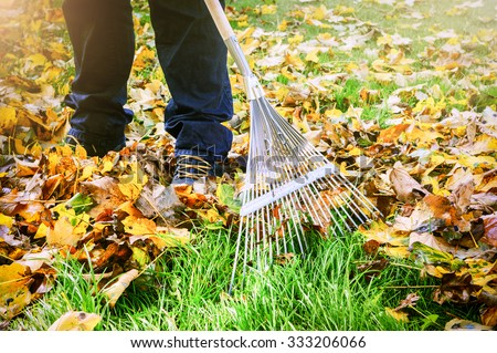 Gardener raking fall leaves in garden - stock photo