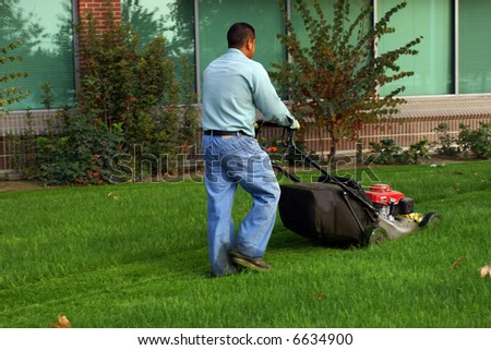 Gardener uses rotary mower on lawn of commercial property