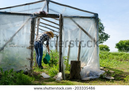 Gardener woman with watering-can water plants in handmade greenhouse conservatory.  - stock photo