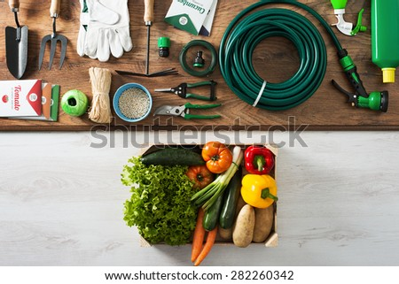 Gardening and farming tools on a wooden table and crate filled with fresh vegetables, top view - stock photo
