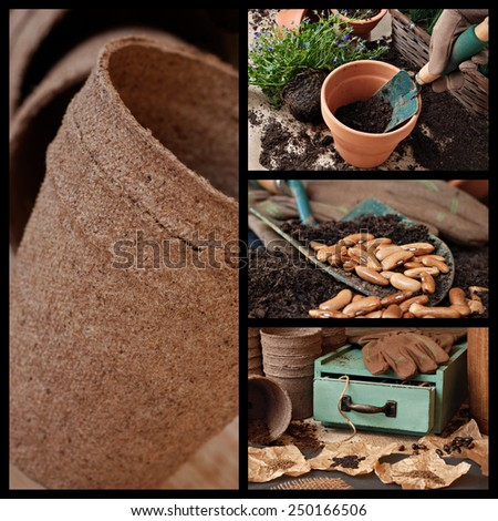Gardening collage includes images of flower pots, garden supplies and various seeds with vintage wooden box. - stock photo