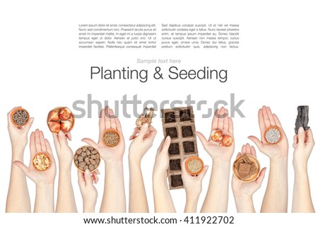 gardening. collage of planting and seeding supplies in a hands isolated on white background - stock photo