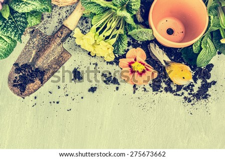 Gardening frame with old garden scoop, flowers pot, soil and blooming , top view, toned - stock photo
