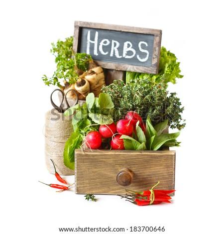 Gardening. Fresh kitchen garden herbs and vegetables. - stock photo