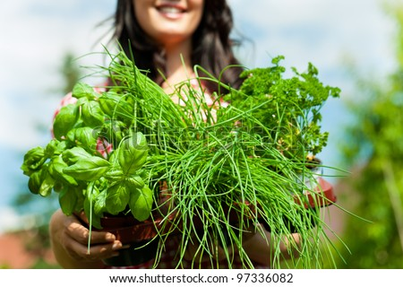 Gardening in summer - happy woman with different kind of fresh herbs - stock photo