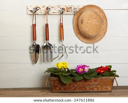 gardening tools and beautiful pink primula in flowerpot