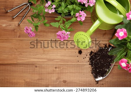 Gardening tools and flower on wooden background - stock photo