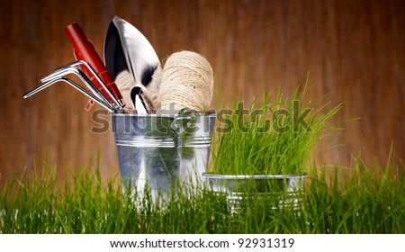 Gardening tools and houseplants - stock photo