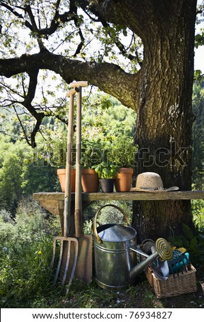 Gardening tools and plants outdoor nature shoot - stock photo