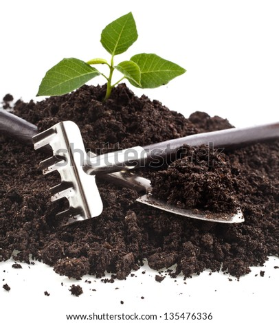 gardening tools and seedling in soil isolated on a white background - stock photo