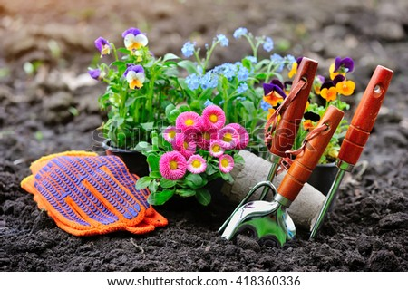 Gardening tools and spring flowers in the garden - stock photo