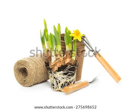 Gardening tools on background - stock photo