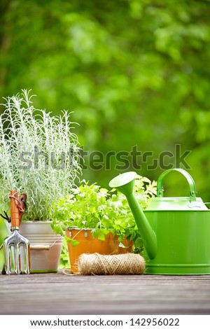 Gardening tools  on the terrace in the garden - stock photo