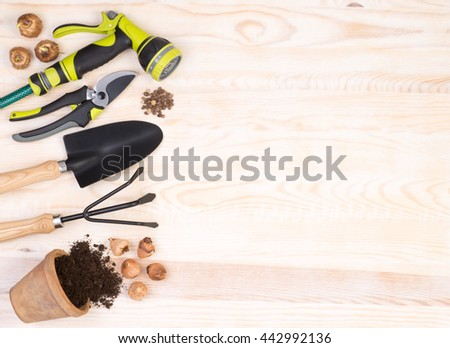 Gardening tools on wooden background with copy space - stock photo