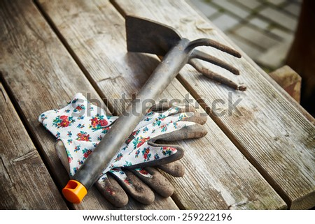 gardening tools on wooden plank background. Spring is coming.  - stock photo