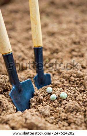 Gardening tools standing next to some seeds - stock photo