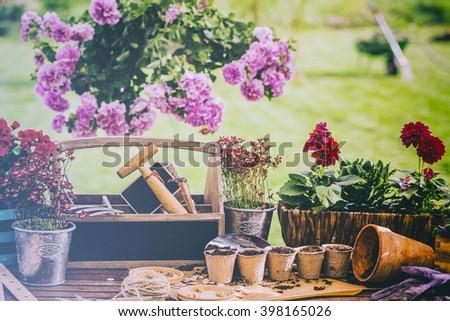 Gardening - Work in the garden, planting pots  - stock photo