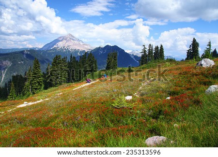 Garibaldi Provincial Park in British Columbia, Canada - stock photo