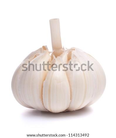 garlic bulb isolated on white background cutout - stock photo