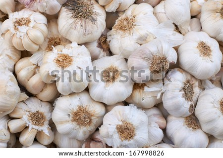 Garlic for sale on Provence market, Marseille city, South France - stock photo