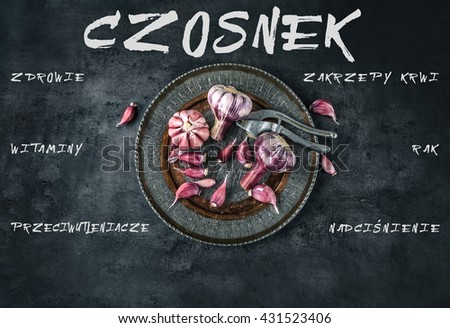 Garlic. Fresh garlic. Red garlic. Garlic press. Violet garlic.Garlic background. garlic bulbs. Medical health concept. Polish text.  - stock photo