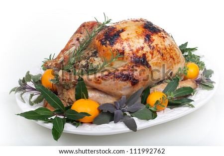 Garnished citrus glazed roasted turkey on tray over white background - stock photo