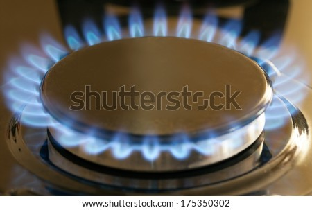 gas burning from a kitchen gas stove  - stock photo