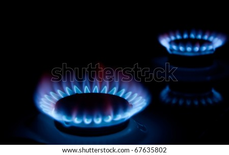 gas burns on the stove - stock photo