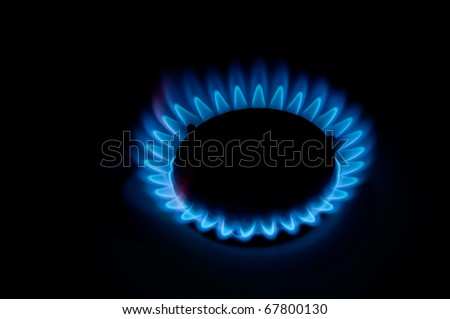 gas burns on the stove