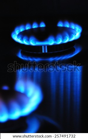 gas flame energy cooker - stock photo