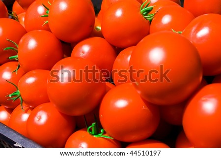 Gathered fresh red tomatoes with green leaves - stock photo
