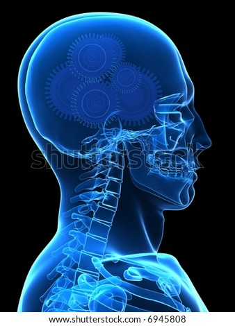 gears in head - stock photo
