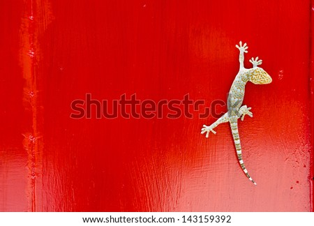Gecko portrait at the red wall - stock photo