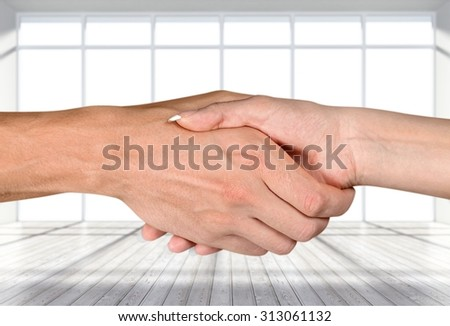 Gender Handshake. - stock photo