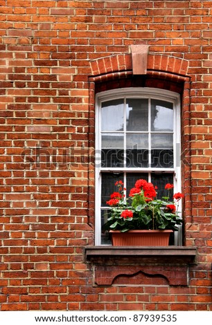 Generium Window box in Brick Wall - stock photo
